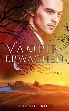 Vampirerwachen von Friedl,  Stefanie, Licht,  Kristina