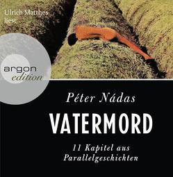 Vatermord von Matthes,  Ulrich, Nádas,  Péter, Viragh,  Christina