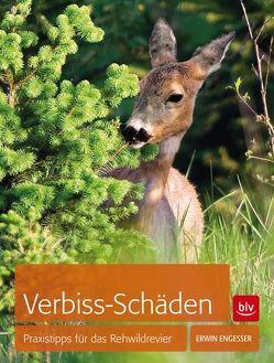 Verbiss-Schäden von Engeßer,  Erwin