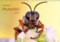 Verborgene Makro-Welten (Wandkalender 2019 DIN A3 quer) von Brandmeier,  Wolfgang