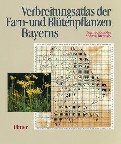 Verbreitungsatlas der Farn- und Blütenpflanzen Bayerns von Bresinsky,  Andreas, Schönfelder,  Peter