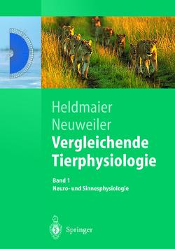 Vergleichende Tierphysiologie von Heldmaier,  Gerhard, Neuweiler,  Gerhard