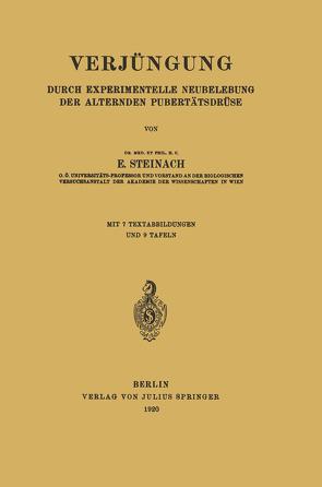 Verjüngung von Steinach,  E.