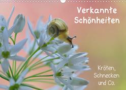 Verkannte Schönheiten – Kröten, Schnecken und Co. (Wandkalender 2020 DIN A3 quer) von Berger (Kabefa),  Karin