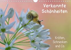 Verkannte Schönheiten – Kröten, Schnecken und Co. (Wandkalender 2020 DIN A4 quer) von Berger (Kabefa),  Karin