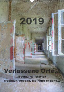 Verlassene Orte…Beelitz Heilstätten – treppauf, treppab, die Flure entlang (Wandkalender 2019 DIN A3 hoch) von Schröer,  Ralf