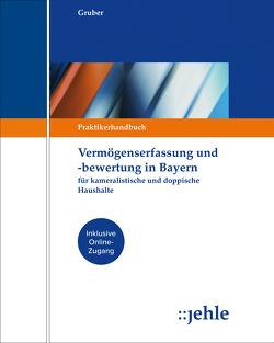 Vermögenserfassung und -bewertung in Bayern von Gruber,  Elisabeth