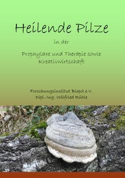Veröffentlichungen des Forschungsinstitutes Biopol / Naturwirkstoffe für die Prophylaxe und Therapie sowie Kreativwirtschaft von Rühle,  Wilfried