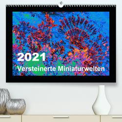 Versteinerte Miniaturwelten – Farbenspiele auf Solnhofener Plattenkalk (Premium, hochwertiger DIN A2 Wandkalender 2021, Kunstdruck in Hochglanz) von Leitner,  Dietmar