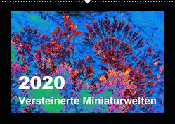 Versteinerte Miniaturwelten – Farbenspiele auf Solnhofener Plattenkalk (Wandkalender 2020 DIN A2 quer) von Leitner,  Dietmar