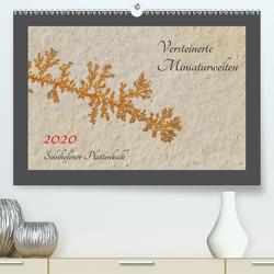 Versteinerte Miniaturwelten. Solnhofener Plattenkalk (Premium, hochwertiger DIN A2 Wandkalender 2020, Kunstdruck in Hochglanz) von Leitner,  Dietmar
