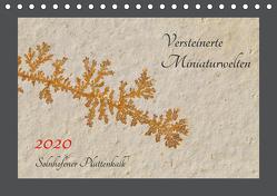 Versteinerte Miniaturwelten. Solnhofener Plattenkalk (Tischkalender 2020 DIN A5 quer) von Leitner,  Dietmar
