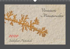 Versteinerte Miniaturwelten. Solnhofener Plattenkalk (Wandkalender 2020 DIN A3 quer) von Leitner,  Dietmar