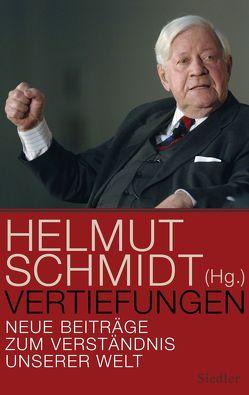 Vertiefungen von Schmidt,  Helmut