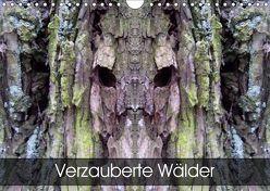 Verzauberte WälderAT-Version (Wandkalender 2019 DIN A4 quer)