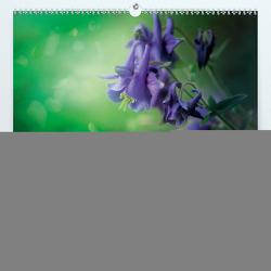 Verzauberter Wald (Premium, hochwertiger DIN A2 Wandkalender 2020, Kunstdruck in Hochglanz) von Wunderlich,  Simone