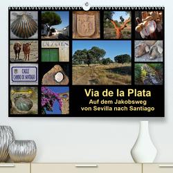 Via de la Plata – auf dem Jakobsweg von Sevilla nach Santiago (Premium, hochwertiger DIN A2 Wandkalender 2021, Kunstdruck in Hochglanz) von B.,  Rina