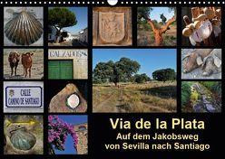 Via de la Plata – auf dem Jakobsweg von Sevilla nach Santiago (Wandkalender 2019 DIN A3 quer) von B.,  Rina