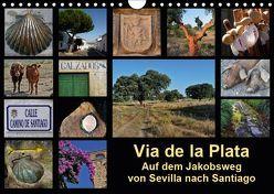 Via de la Plata – auf dem Jakobsweg von Sevilla nach Santiago (Wandkalender 2019 DIN A4 quer) von B.,  Rina