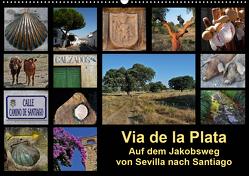 Via de la Plata – auf dem Jakobsweg von Sevilla nach Santiago (Wandkalender 2021 DIN A2 quer) von B.,  Rina