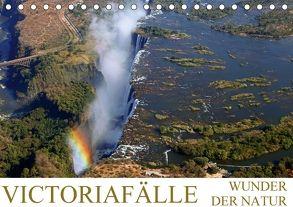 VICTORIAFÄLLE Wunder der Natur (Tischkalender 2018 DIN A5 quer) von Woyke,  Wibke