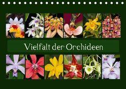 Vielfalt der Orchideen (Tischkalender 2018 DIN A5 quer) von Schulz,  Eerika