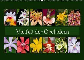 Vielfalt der Orchideen (Wandkalender 2019 DIN A2 quer)
