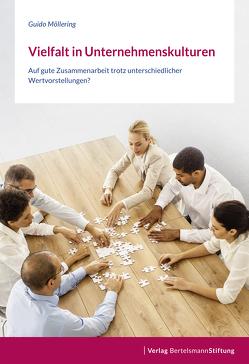 Vielfalt in Unternehmenskulturen von Möllering,  Guido