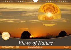 Views of Nature – Traumlandschaften (Wandkalender 2019 DIN A4 quer) von Teßen,  Sonja