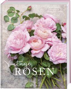 Vintage Rosen von Eastoe,  Jane, Lane,  Georgianna