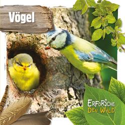 Vögel von Twiddy,  Robin