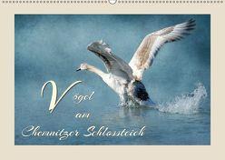 Vögel am Chemnitzer Schlossteich (Wandkalender 2018 DIN A2 quer) von Hultsch,  Heike
