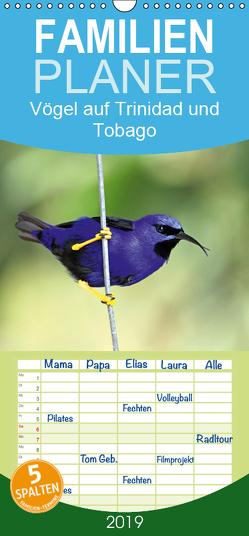Vögel auf Trinidad und Tobago – Familienplaner hoch (Wandkalender 2019 , 21 cm x 45 cm, hoch) von W. Bruechle,  Dr., Weiterstadt