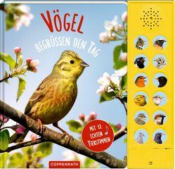 Vögel begrüßen den Tag von Haag,  Holger