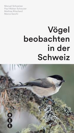 Vögel beobachten in der Schweiz von Ritschard,  Mathias, Sacchi,  Marco, Schweizer,  Manuel, Walser Schwyzer,  Paul