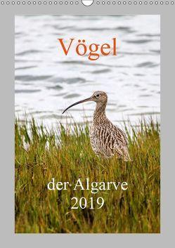 Vögel der Algarve 2019 (Wandkalender 2019 DIN A3 hoch) von Liongamer1