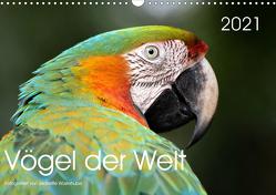 Vögel der Welt (Wandkalender 2021 DIN A3 quer) von Wüstehube,  Jeanette