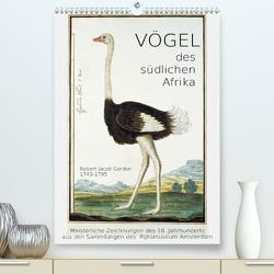 Vögel des südlichen Afrika (Premium, hochwertiger DIN A2 Wandkalender 2020, Kunstdruck in Hochglanz) von Galle,  Jost