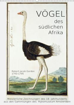 Vögel des südlichen Afrika (Wandkalender 2020 DIN A2 hoch) von Galle,  Jost