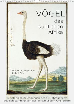 Vögel des südlichen Afrika (Wandkalender 2020 DIN A3 hoch) von Galle,  Jost
