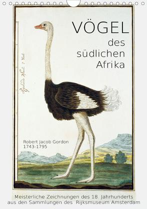 Vögel des südlichen Afrika (Wandkalender 2020 DIN A4 hoch) von Galle,  Jost
