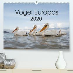 Vögel Europas 2020 (Premium, hochwertiger DIN A2 Wandkalender 2020, Kunstdruck in Hochglanz) von Schröder,  Hans