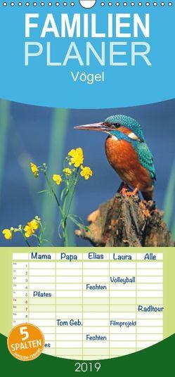 Vögel – Familienplaner hoch (Wandkalender 2019 , 21 cm x 45 cm, hoch) von McPHOTO