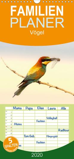 Vögel – Familienplaner hoch (Wandkalender 2020 , 21 cm x 45 cm, hoch) von R Bogner,  J