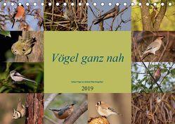 Vögel ganz nah (Tischkalender 2019 DIN A5 quer) von Erlwein,  Winfried