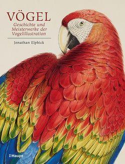 Vögel – Geschichte und Meisterwerke der Vogelillustration von Elphick,  Jonathan, Niehaus,  Monika, Wink,  Coralie, Wissmann,  Jorunn