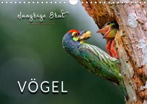 Vögel – Hungrige Brut (Wandkalender 2020 DIN A4 quer) von Roder,  Peter