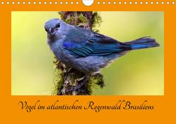 Vögel im atlantischen Regenwald Brasiliens (Wandkalender 2020 DIN A4 quer) von Brockner,  Armin