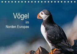 Vögel im Norden Europas (Tischkalender 2019 DIN A5 quer) von Thoma,  Martin