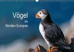 Vögel im Norden Europas (Wandkalender 2019 DIN A3 quer) von Thoma,  Martin